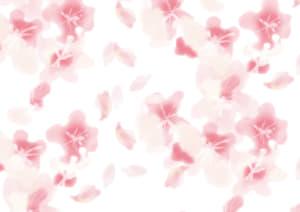 水彩で描いた桜吹雪のラッピング素材